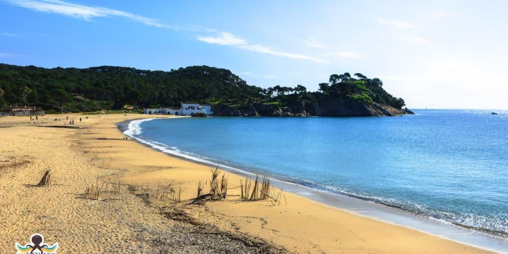 playa del Castell