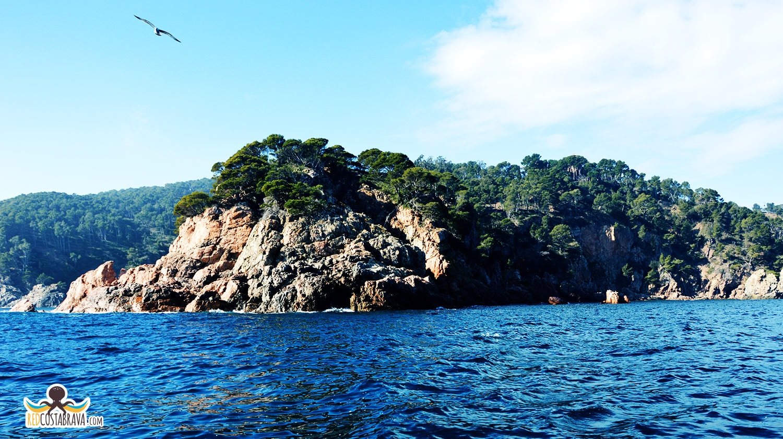 vista de Cap Roig desde el mar