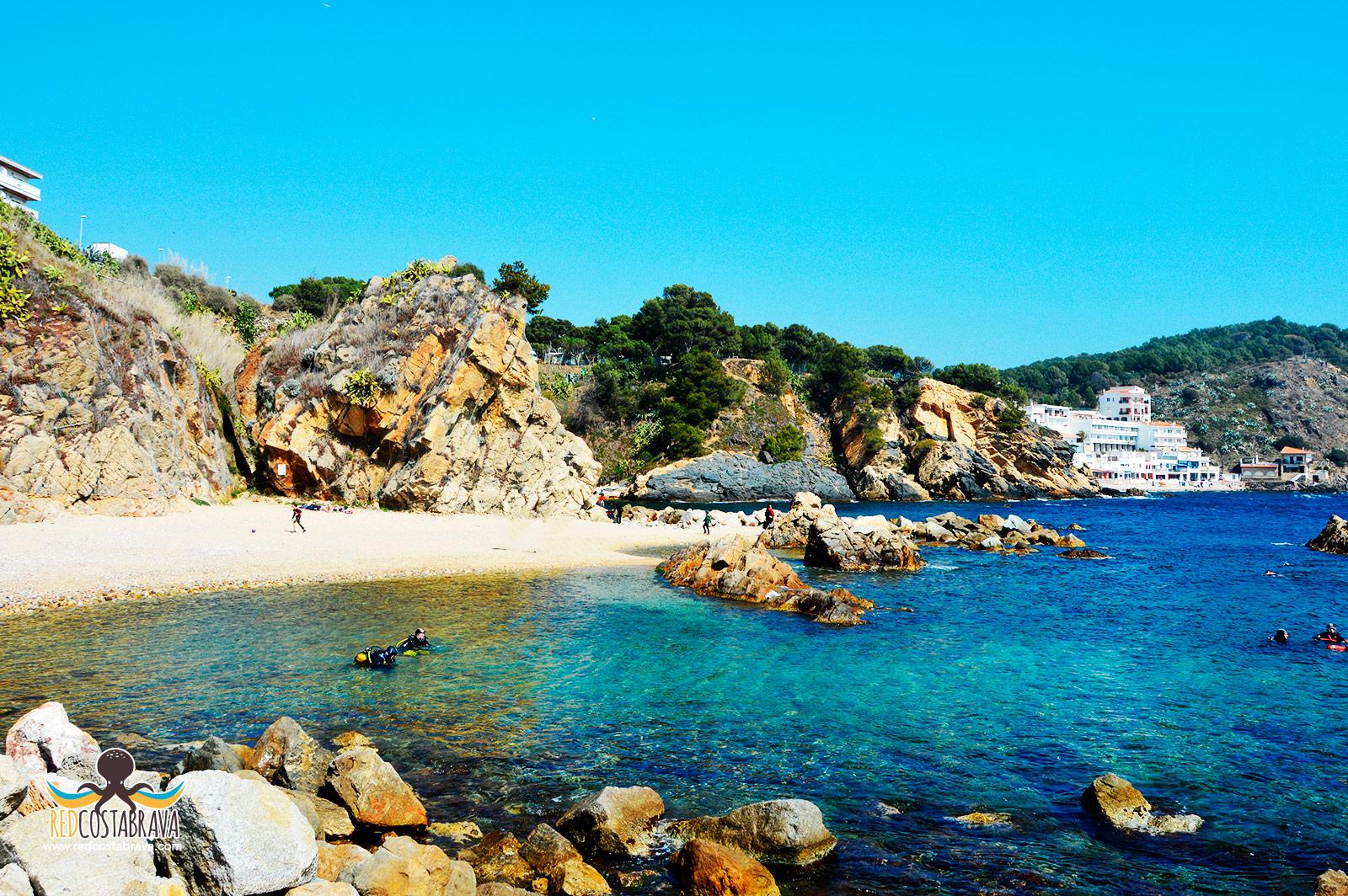 Las mejores playas y calas de Palamós – Red Costa Brava