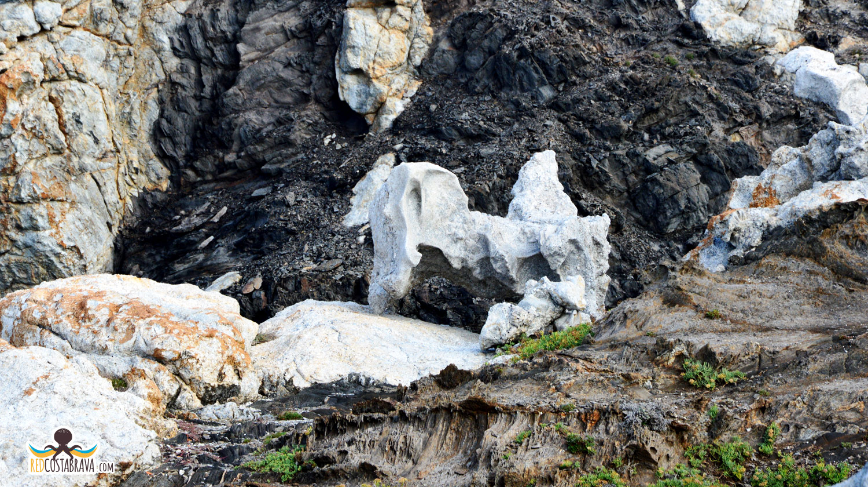 Pla de Tudela - Roca Cavallera