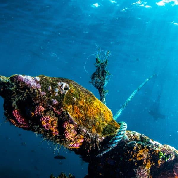 Bucear en pecios, inmersiones extraordinarias en búsqueda de barcos hundidos en la Costa Brava