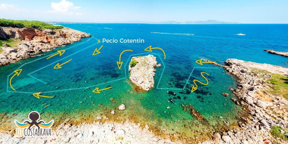 Ruta Snorkel en la Costa Brava - Cala Mateua y el pecio Cotentin