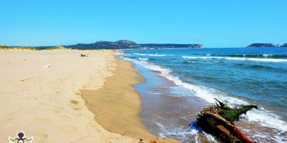 playa Mas Pinell - Estartit
